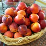 jennifer-fisher-thefitfork.com-peaches-nectarines-1024x801