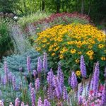 This image has an empty alt attribute; its file name is perennial-garden-150x150.jpg