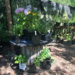 This image has an empty alt attribute; its file name is Plant-Sale-Tables-150x150.jpg